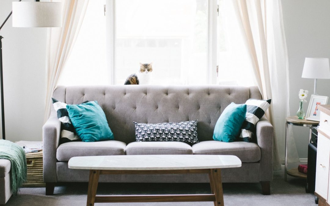 On-site, In-home Sofa Repair and Restoration